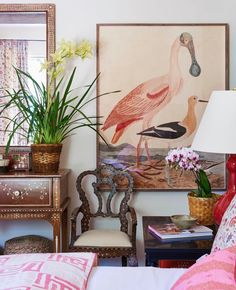 Mark D. Sikes. Art. Bird art. British colonial, pink color palette