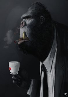 saad-irfan-gorilla.jpg (1920×2716)