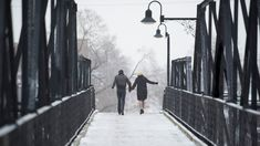 Stories We Tell [2012] [Sarah Polley]  [Documentary]