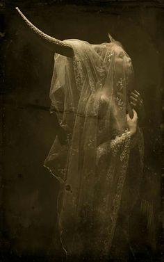 New photography dark fantasy ravens ideas Arte Obscura, Mystique, Arte Horror, Dark Photography, Macabre Photography, Halloween Photography, Dark Beauty, Dark Art, Dark Side