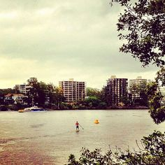 cool Stand-Up Paddle Boarding in the rain? Now there's an adventurer!! #brisbane #igersbrisbane #seeaustralia #australia #river #adventure #sport #paddleboard / http://www.paddleboardshop.org/?p=369