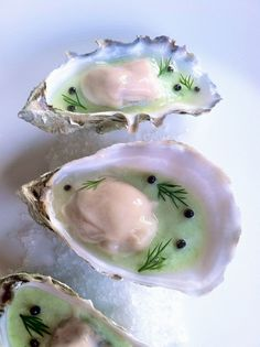 Oyster Vichyssoise | by mm84321 (scheduled via http://www.tailwindapp.com?utm_source=pinterest&utm_medium=twpin&utm_content=post108198631&utm_campaign=scheduler_attribution)