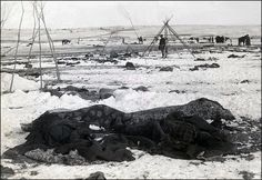 This photograph is of the aftermath of the Massacre at Wounded Knee. A sad look into the workings of an unjust  Government caught in the trappings of greed for land and total power over and submission of the original inhabitants of a country.