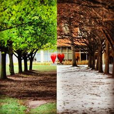 North Campus and changing seasons