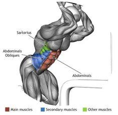 ABDOMINALS -  CABLE CRUNCH(Best Weight Workout)