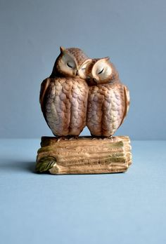 Loving Owls Music Box