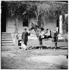 [City Point, Virginia. Gen. Rufus Ingalls' horse and dog]