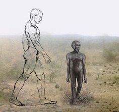 """The height of Homo floresiensis (3ft 6in) compared with modern humans, Homo sapiens (6ft). It has been confirmed that Homo floresiensis is a genuine ancient human species and not a descendant of healthy humans dwarfed by disease. Using statistical analysis on skeletal remains of a well-preserved female specimen, researchers in several different labs have determined that the """"hobbit"""" is definitely a distinct species of human and not a genetically flawed version. of modern humans."""
