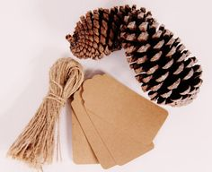 50 Rustic Brown Paper Tags with Twine Ties by thelittlebundle, $10.00