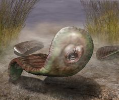These Cambrian fossil reconstructions are positively terrifying. Lovecraftian even.