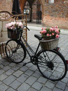 #bicyclevintage