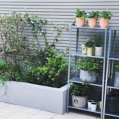 HYLLIS in/outdoor galvanised, Shelving unit. Suitable for both indoor and outdoor use. Back Garden Design, Vegetable Garden Design, Backyard Garden Design, Backyard Landscaping, Small Courtyard Gardens, Back Gardens, Small Gardens, Outdoor Gardens, Garden Paving