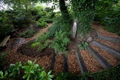 NGS Gardens open for charity - Garden at green Hill House, West Yorkshire