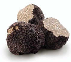 How to Grow Truffles