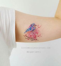 Cute Watercolor Bird