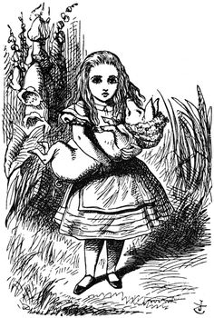 Alice Adventures In Wonderland/Through Looking Glass Lewis Carroll John Tenniel