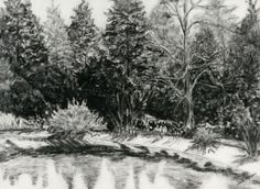 """Summer Landscape   Jane Morgan    30"""" x 36""""   Graphite and Charcoal"""