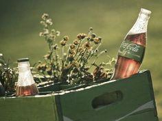En Noviembre del 2011, la unión Europea otorga la autorización de la venta del edulcorante STEVIA, es por eso que toda la industria alimentaria, se enciende y emprende la carrera desesperada en la captación de este segmento de mercado, el cual fue provocado por todas aquellas industriasde bebidas con azucares excesivos. Por otro lado van…