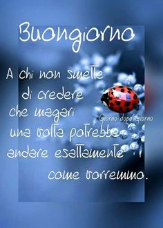 Buon giorno Messages For Friends, Italian Phrases, Dark Fantasy Art, Day For Night, Slogan, Good Morning, Thoughts, Facebook, Sentences