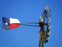 Love windmills