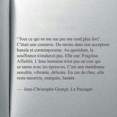 Jean Christophe Grangé - Le passager