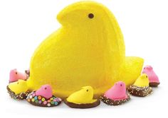 Need a fun Easter cake idea? Make your Easter centerpiece with PEEPS? Bake a cake in the PEEPS? Pan Set and surround it with pretty pastel PEEPS? Marshmallow Chicks, dipped in Candy Melts candy and decorated with colorful sprinkles. Easter Cake Easy, Easter Peeps, Easter Cupcakes, Easter Cookies, Hoppy Easter, Wilton Cake Pans, Marshmallow Peeps, Wilton Cake Decorating, Dessert