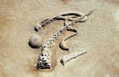 Rhythms of Life, Arava desert, Israel 2001