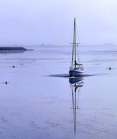 Winter fog in the harbor in Plymouth, MA - Janice Drew