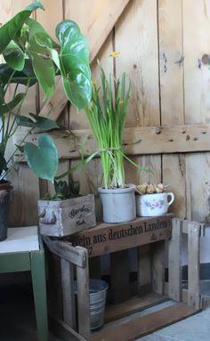Niehoffs kleines Küchenmuseum | An jedem Tag ein Lächeln