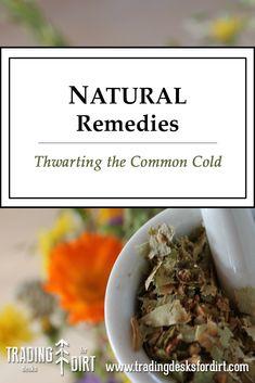 Natural Remedies - Thwarting the Common Cold #naturalremedies #alternativemedecine #holistic #coughandcoldremedies #coldandfluseason #tradingdesksfordirt