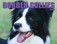 I Love Border Collies!
