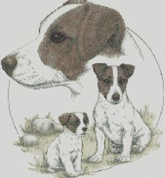 Cross Stitch Chart - Kit The Jack Russell Terrier Dog