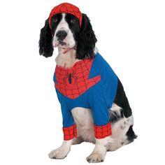 Spiderman costume  https://www.tiendanimal.fr/deguisement-spiderman-pour-chiens-p-9567.html