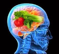 """Dieta Da Longevidade Cerebral - Leia e Descubra! (clique na imagem) ------------------ A alimentação é muito importante para o cérebro. Ela funciona como o melhor protetor contra doenças relcionadas à memória. Para começarf faça uma dieta com baixo teor de gordura. O que é bom para o coração é bom para a cabeça. A dieta precisa ser rica em nutrientes. Evite a hipoglicemia. O único """"combustível"""" do […]"""
