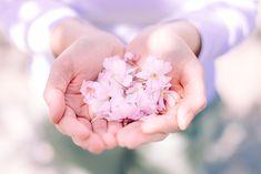 Cherry blossom photo shoot: http://www.skop-photos.de/portraitshooting_fotograf_muenchen/
