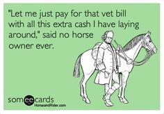 HAHAHA! #horse #equine http://globalhorsecents.com