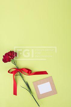 감사의 선물 098, PHO408, 프리진, 사진, 선물, 오브젝트, PHO408b, 감사, 고마운, 어버이날, 스승의날, 카네이션, 꽃, 메세지, 카드, 종이, 리본, 묶여있는, 에프지아이, 선물상자, pho408 #유토이미지 Focus Group, Innovation