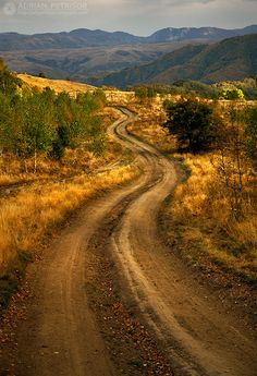 Autumn colors in Apuseni Mountains, a splendid mountain plateau in Romania Forest Road, Winding Road, Back Road, Take Me Home, The Real World, Far Away, Pathways, Places To See, Nature Photography