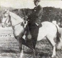 CABALLOS COLOMBIANOS: CABALLOS HISTORICOS DEL PASO FINO COLOMBIANO Horses, Animals, Beautiful Horses, Animales, Animaux, Animal, Animais, Horse