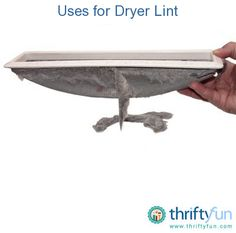 Lint from the dryer can be used for a few things around the house and for fire starter. This is a guide about uses for dryer lint.