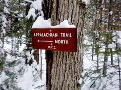 Starting An Appalachian Trail Thru-Hike On New Year's Day -- Passing the first white blaze on January 1st