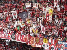 Benfica supporters DV + NN