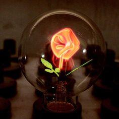 Edison Bulb E27 G80 Flower Lights indoor lamp 220v globe