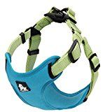PetsUp Imported Premium Dogs Truelove Front Range Harnesses Soft Reflective Nylon Harness for Small Medium Large pets (Small Sea Blue)by PetsUp814% Sales Rank in Pet Supplies: 376 (was 3439 yesterday)(9)Buy: Rs. 1799.00 Rs. 1299.00 (Visit the Movers & Shakers in Pet Supplies list for authoritative information on this product's current rank.)