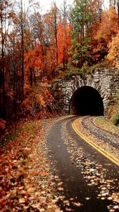 Tunnel into fall