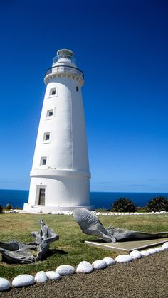Planning a trip to Australia? Don't miss the majestic scenery of the Kangaroo Island! You'll love it!
