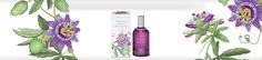 Parfümök - Rendeld meg online! Lerbolario Naturkozmetikumok http://lerbolario-naturkozmetikumok.hu/kategoriak/testapolas/parfumok