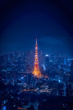Tokyo Tower at Blue Night (Japan)