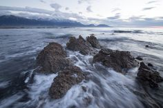 nz-coast-risen-earthquake New Zealand Landscape, Cool Landscapes, Tourism, Coast, Water, Outdoor, Turismo, Gripe Water, Outdoors