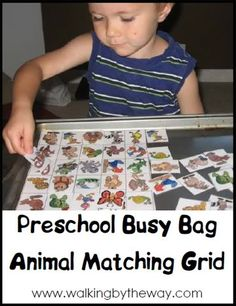 Animal Matching Grid | Walking by the Way